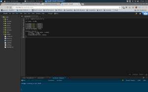 Screenshot from Cloud9 IDE